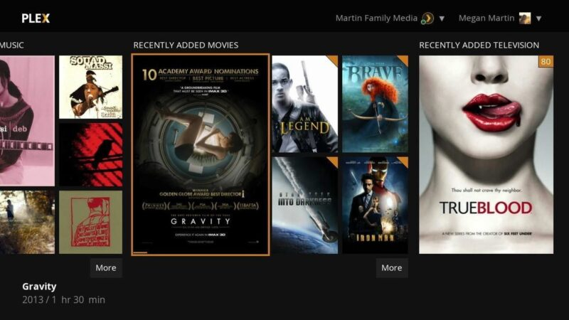 How to add Netflix and use it on Plex with a plugin on MacOS