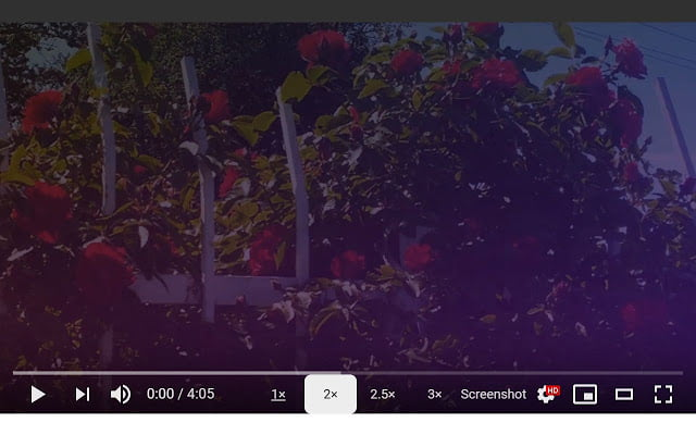 How to take a screenshot from a YouTube video?