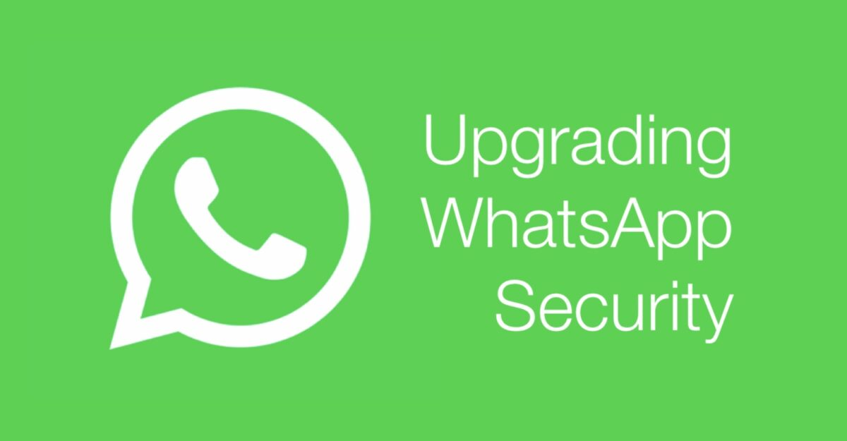 WhatsApp reveals several vulnerabilities that nobody had noticed