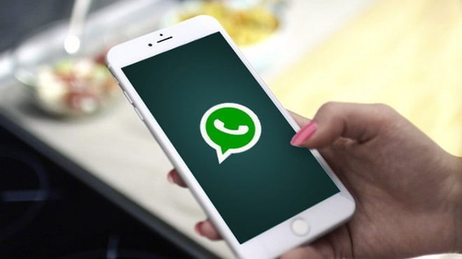 How to create surveys on WhatsApp and add them to your groups?
