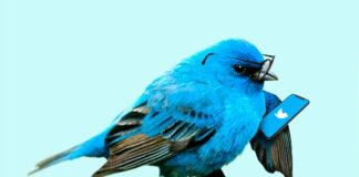 Twitter opens its entire archive for free for academic research