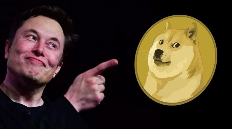Elon Musk has tweeted Doge and Dogecoin has skyrocketed 45 percent