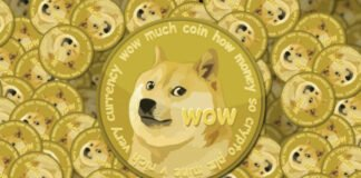 A single person has 28.69% of all Dogecoins, that is a fortune of $2.1B today