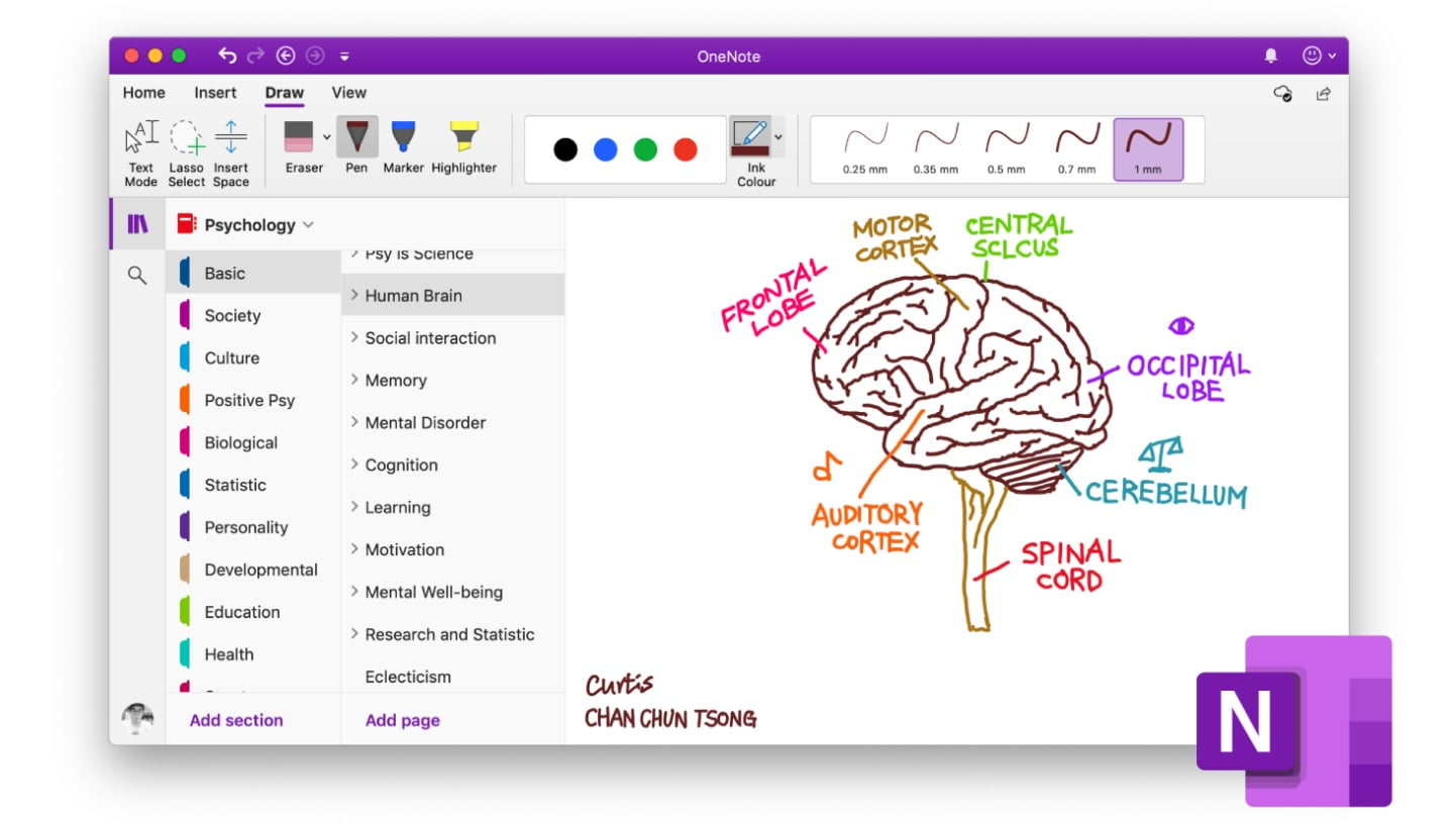 OneNote and Word now let users embed Pinterest pins