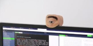 This webcam looks like a human eye: How does it work?