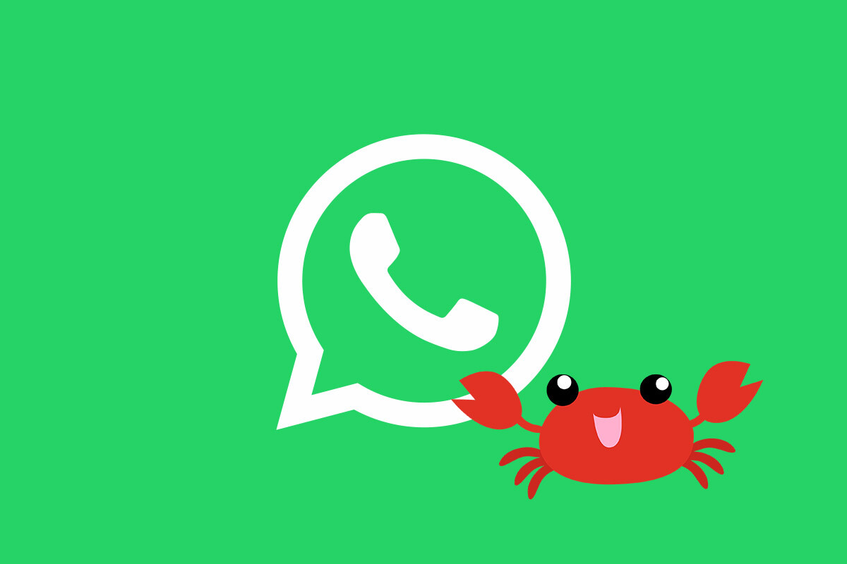 WhatsApp backs down: Nothing will change if you don't accept the new terms and conditions, for now