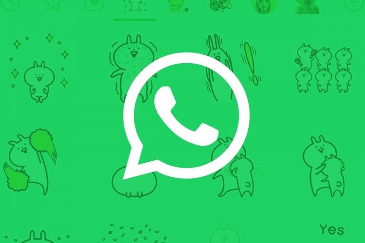 How to manage WhatsApp photos, videos, and documents from the file explorer?