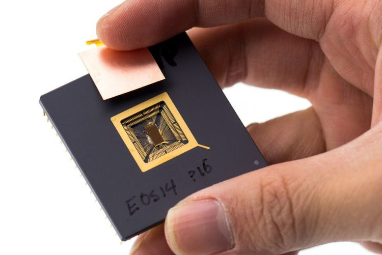 A new competitor is entering the processor market which opted for RISC-V architecture
