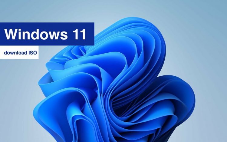 You can now upgrade to Windows 11 via ISO: Microsoft releases Build 22000.132