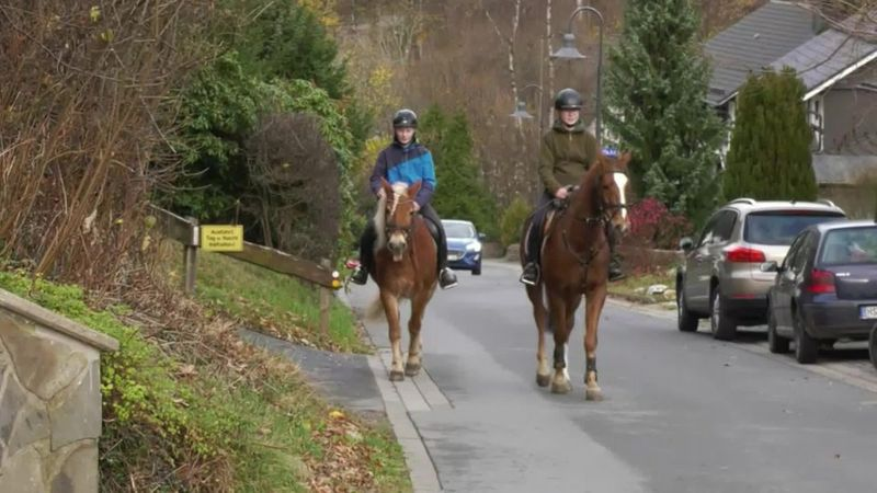 In Germany, a horse beat file transfer speed